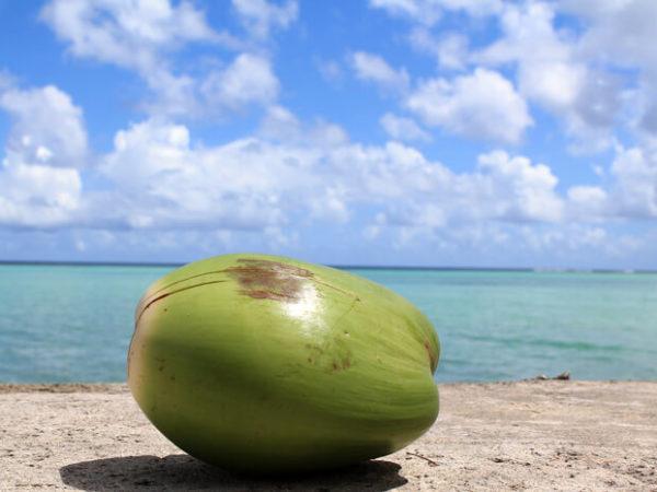 world-summer-resort-guam