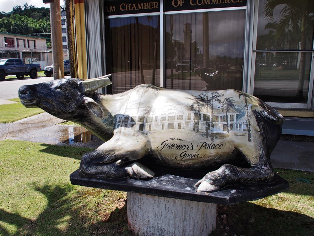 グアムの牛